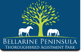 Bellarine Peninsula Thoroughbred Agistment Park