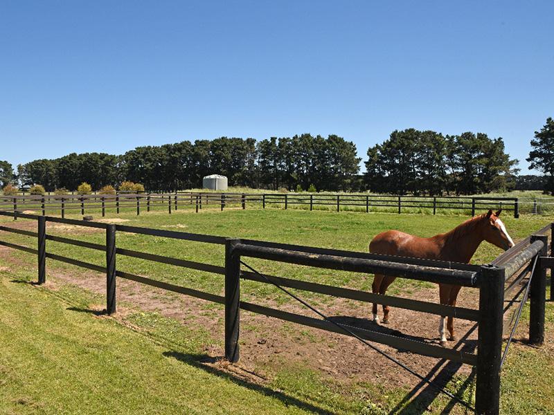 HorseRail yard  30m x 30m